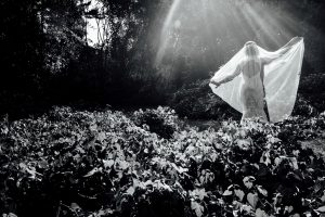 Bride extending her veil in beams of sunlight